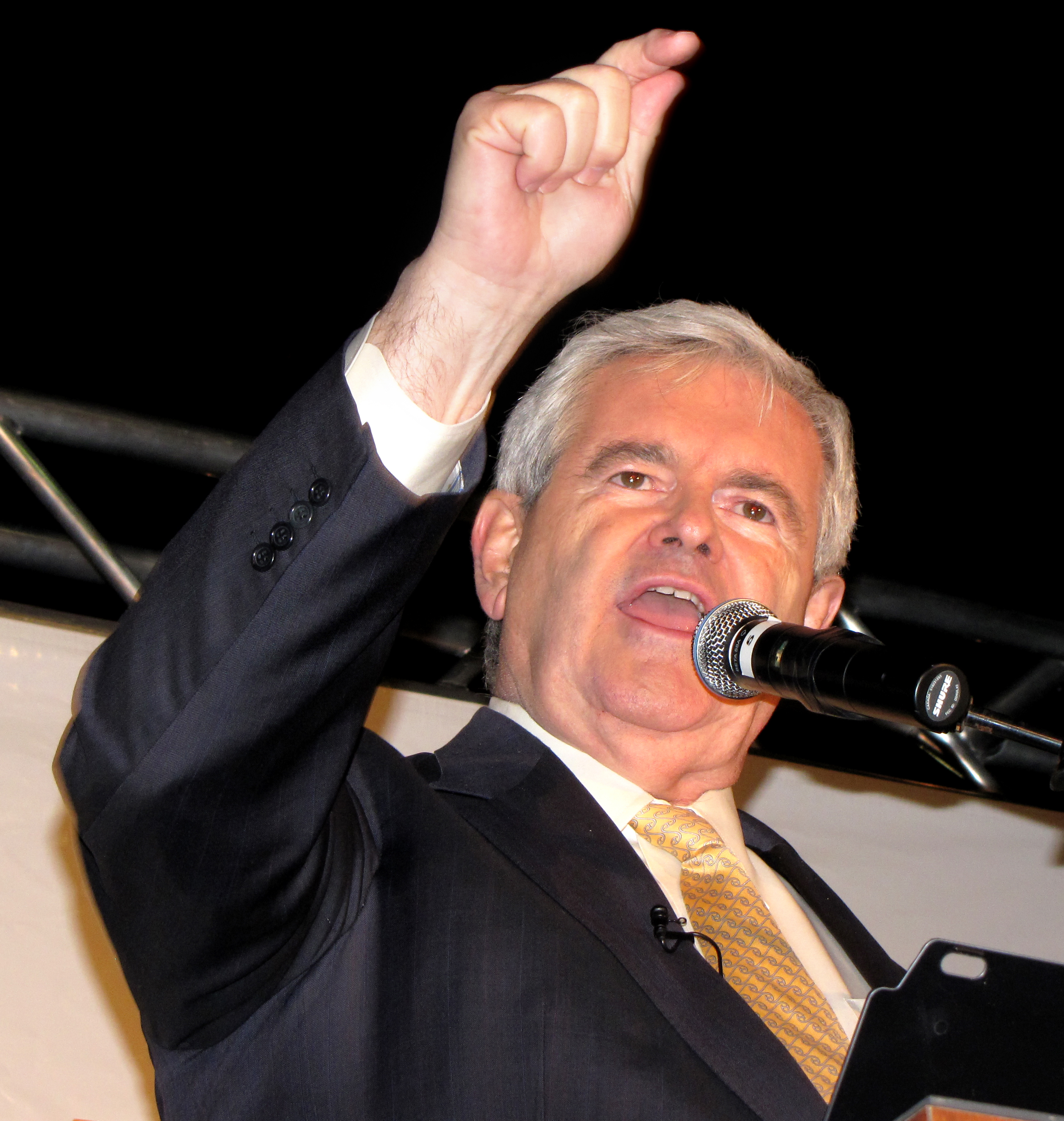 Gingrich Fumes About Fox News at Delaware Tea Party Meeting